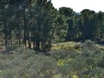 For sale Land Villablanca