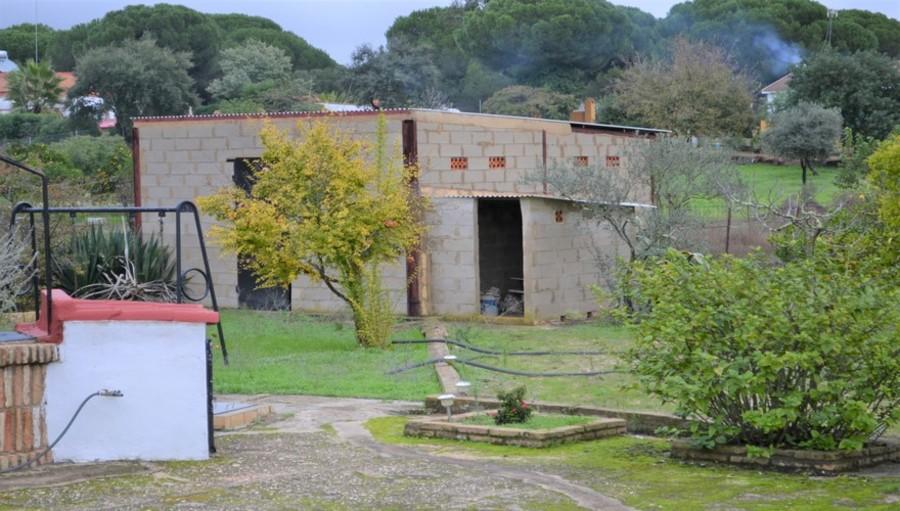 Bonares Finca Huelva