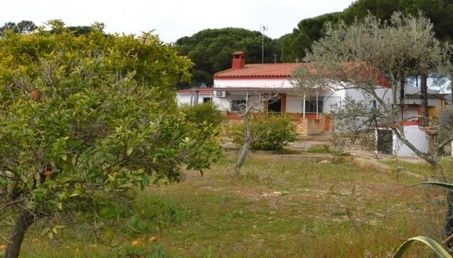 For sale Bonares Finca