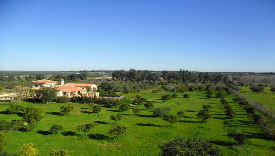 Huelva Finca Almonte