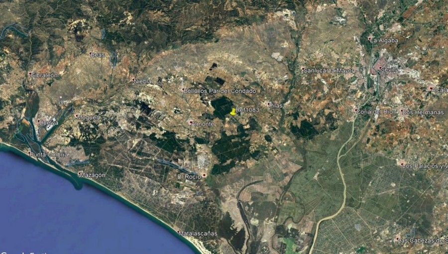 1083: Finca for sale in Hinojos
